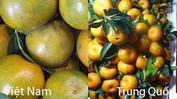 6 cách phân biệt trái cây Tàu - Việt CHUẨN NHẤT. Mẹ đảm nhớ bỏ túi kẻo đi chợ suốt mà vẫn bị mắc lừa