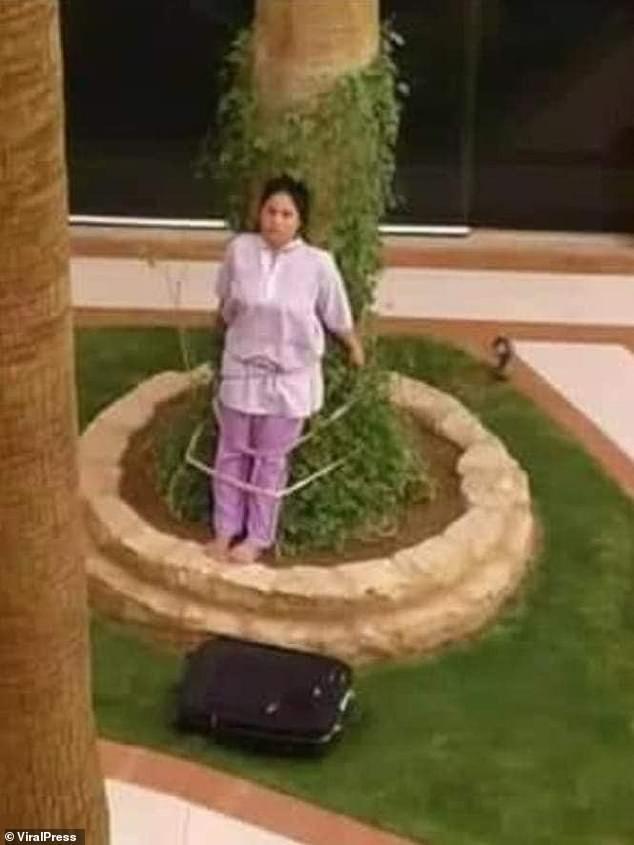 Lỡ để đồ đạc ngoài nắng, nữ giúp việc bị chủ nhà trói vào gốc cây gây phẫn nộ - Ảnh 1.