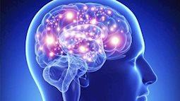 """Nếu còn tiếp tục 10 thói quen sai lầm này, đừng hỏi vì sao trí nhớ của bạn ngày càng tệ, thậm chí não còn bị """"tàn phá"""" nghiêm trọng"""