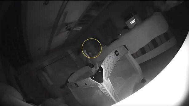Chuyện kì bí: Phụ huynh kinh hoàng khi phát hiện ra con gái mình bị ma cào qua camera - Ảnh 2.