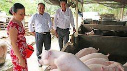 Dịch tả lợn châu Phi khắp miền Nam, lãnh đạo Bộ NNPTNT họp gấp