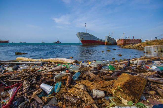 5 hành động nho nhỏ nhưng lại góp sức to lớn vào tương lai không rác nhựa mà bạn có thể dễ dàng thực hiện - Ảnh 1.
