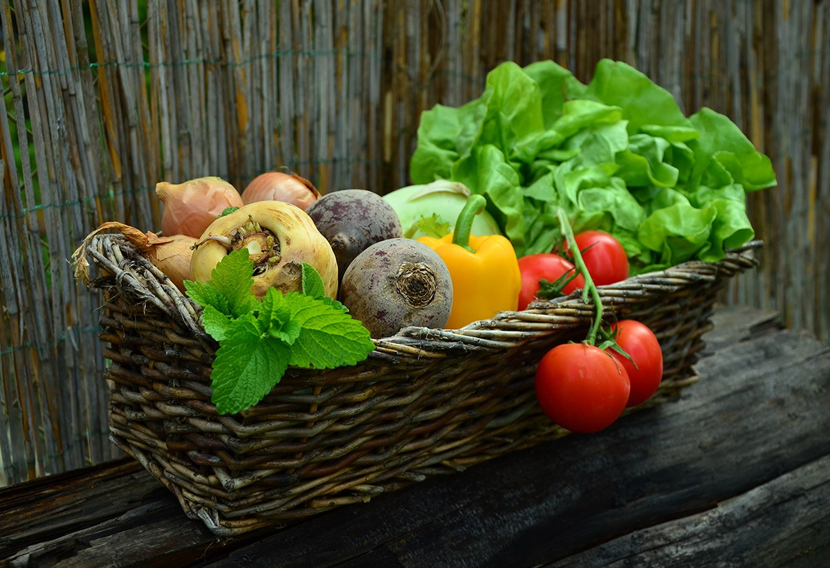 August-3-The-Difference-Between-Fruits-and-Vegetables_wp
