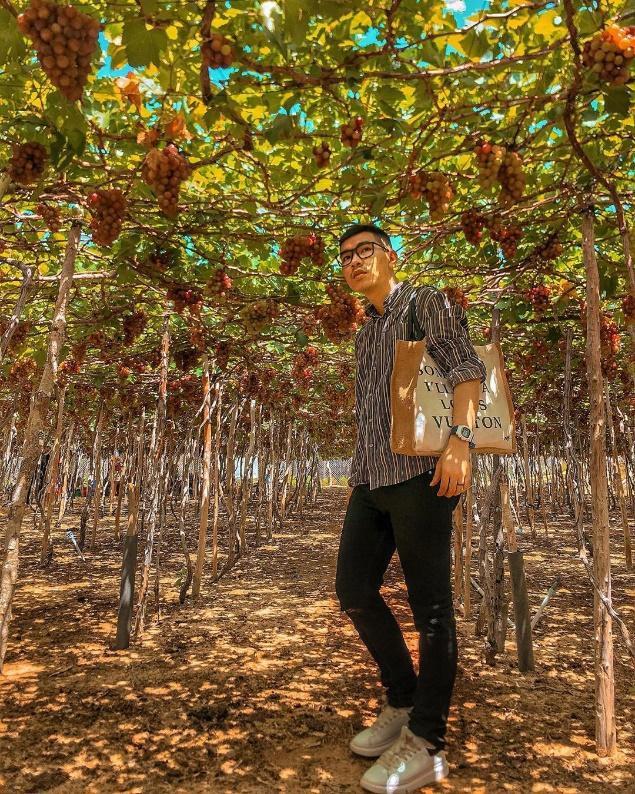 """Tháng 9 đổi gió """"săn nho"""" tại 2 khu vườn nổi tiếng nhất Ninh Thuận để lúc đi có hình sống ảo, lúc về có nho ăn! - Ảnh 14."""