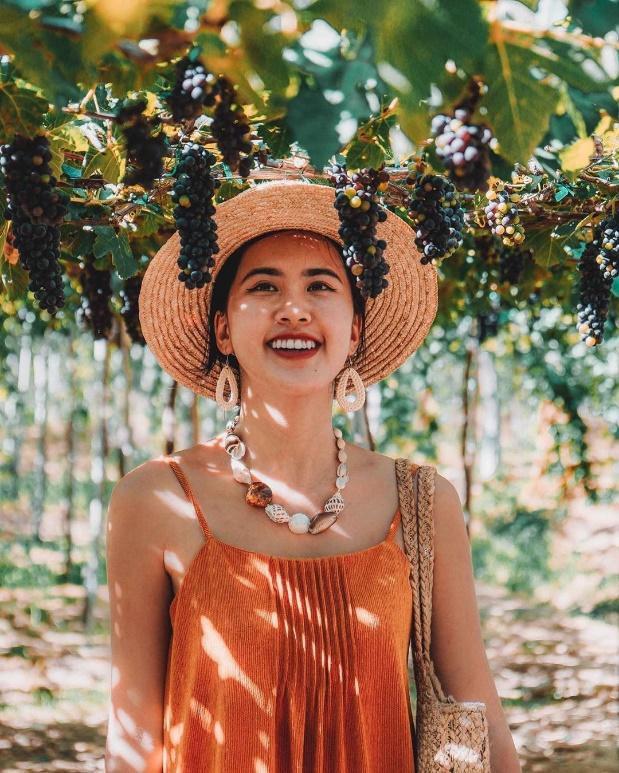 """Tháng 9 đổi gió """"săn nho"""" tại 2 khu vườn nổi tiếng nhất Ninh Thuận để lúc đi có hình sống ảo, lúc về có nho ăn! - Ảnh 5."""