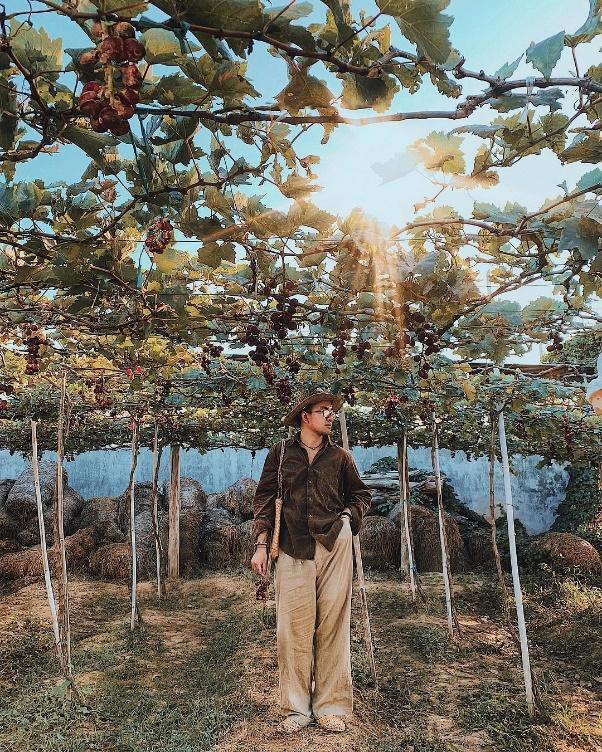 """Tháng 9 đổi gió """"săn nho"""" tại 2 khu vườn nổi tiếng nhất Ninh Thuận để lúc đi có hình sống ảo, lúc về có nho ăn! - Ảnh 8."""