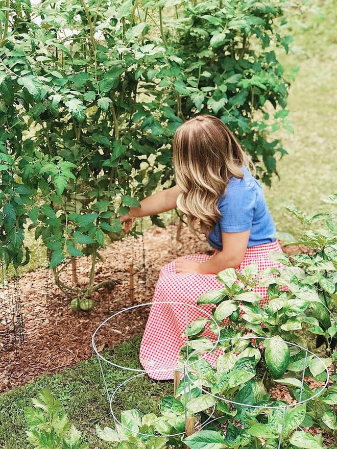 Gặp cô giáo xinh đẹp yêu làm vườn, thích nấu ăn và giấc mơ được trồng rau quả sạch suốt cuộc đời - Ảnh 13.