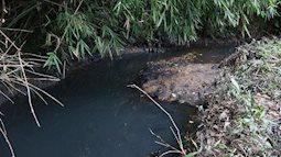 NÓNG: Triệu tập người nghi liên quan đến việc đổ dầu trộm, gây ô nhiễm nguồn nước sông Đà