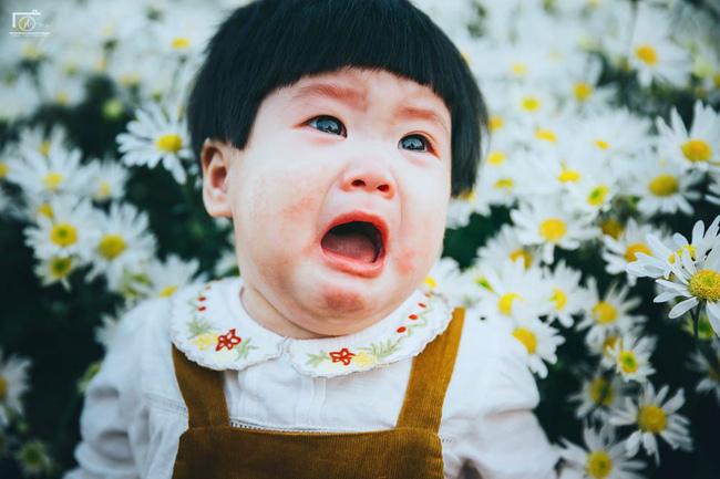 Cô bé khiến dân mạng cười như được mùa với biểu cảm: Đã thèm uống sữa rồi mà mẹ bắt đi chụp ảnh với cúc họa mi - Ảnh 3.