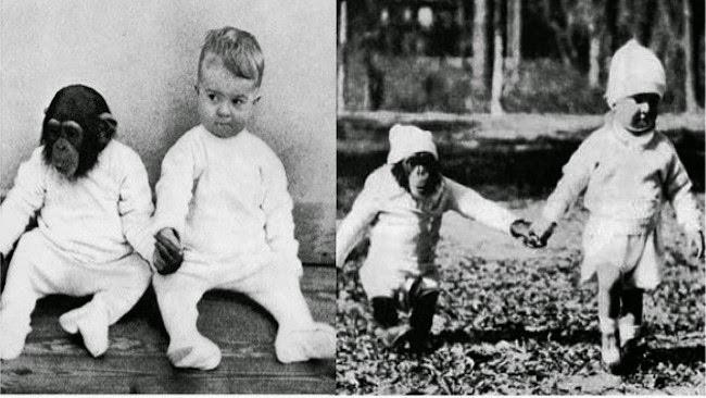 Cho con trai và tinh tinh ăn ngủ cùng nhau để phục vụ thí nghiệm, nhà khoa học hốt hoảng chấm dứt mọi thứ sau 9 tháng khi phát hiện ra sự thật kinh hoàng - Ảnh 2.