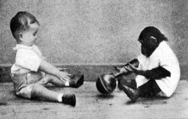 Cho con trai và tinh tinh ăn ngủ cùng nhau để phục vụ thí nghiệm, nhà khoa học hốt hoảng chấm dứt mọi thứ sau 9 tháng khi phát hiện ra sự thật kinh hoàng - Ảnh 4.