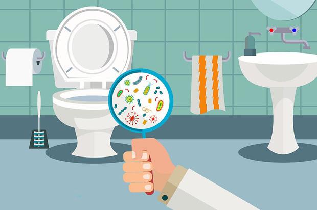 Thực hư nỗi sợ lây bệnh tình dục từ nhà vệ sinh công cộng - Ảnh 1.