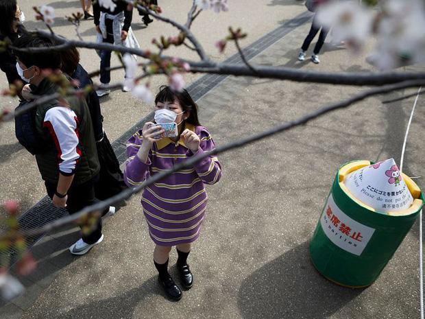 Bỏ ngoài tai những khuyến cáo về dịch bệnh Covid-19, hàng ngàn người dân Nhật vẫn tụ tập ngắm hoa anh đào và xem kickboxing - Ảnh 3.