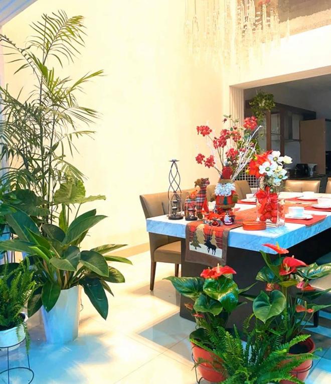 Bà xã Quyền Linh khoe thành quả thu hoạch hoa trái sai trĩu trong căn biệt thự 21 tỷ, được cả chồng lẫn 2 cô con gái xinh đẹp phụ giúp - Ảnh 21.