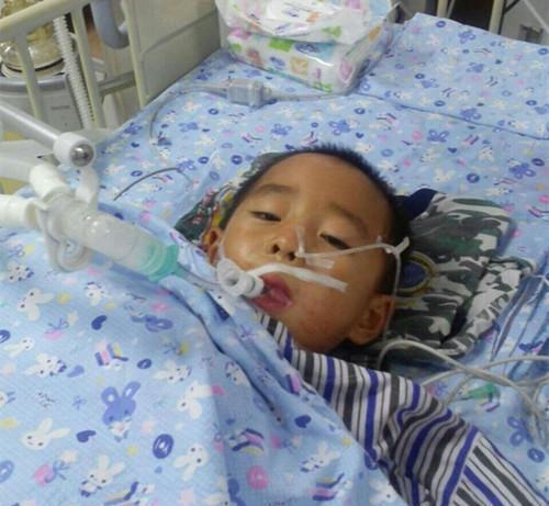 Con trai 12 tuổi đã mắc ung thư thận, bố mẹ ân hận khi biết nguyên nhân đến từ loại thực phẩm quen thuộc mà bé ăn quá nhiều - Ảnh 1.