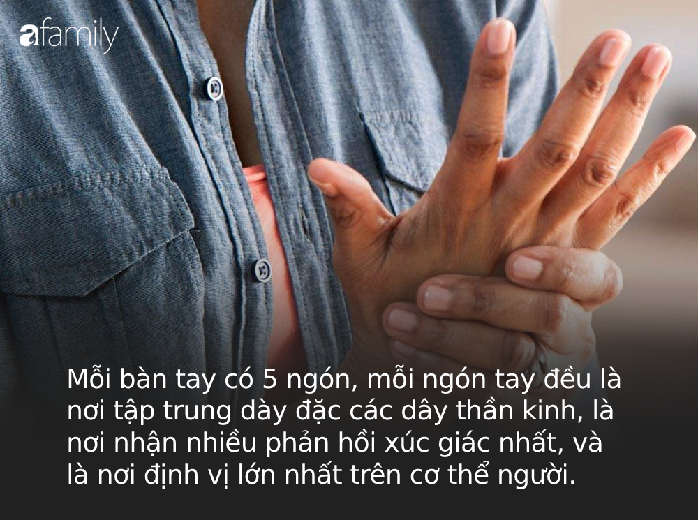 Người sống thọ thường xuất hiện 4 dấu hiệu thú vị này trên bàn tay: Thử kiểm tra ngay xem bạn có đủ hay không! - Ảnh 1.