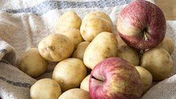 Bảo quản rau củ quả tươi rói với 6 mẹo cực hay
