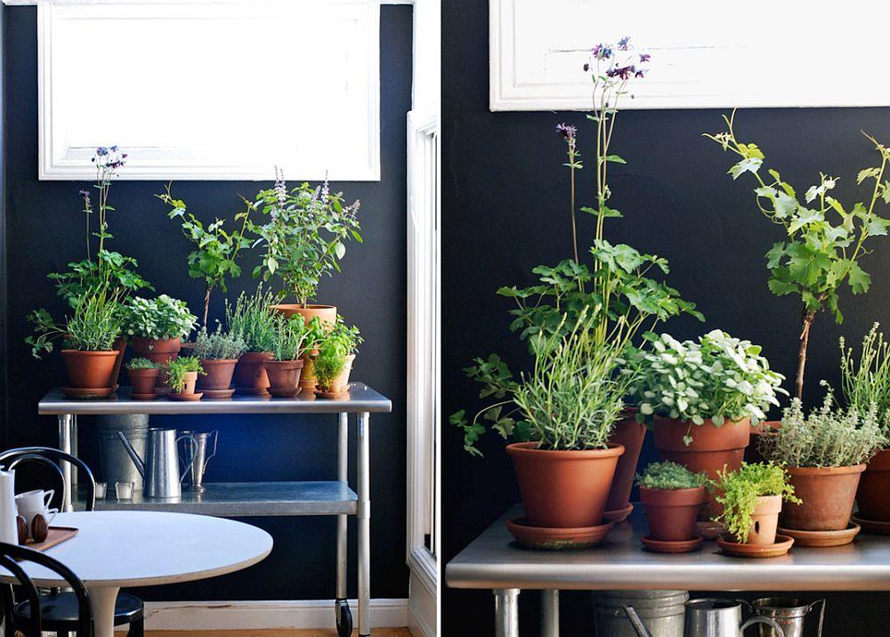 Những ý tưởng siêu hữu ích tạo góc xanh đẹp mắt với đủ loại cây gia vị và thảo mộc cho góc bếp thêm tươi mát chào hè - Ảnh 11.