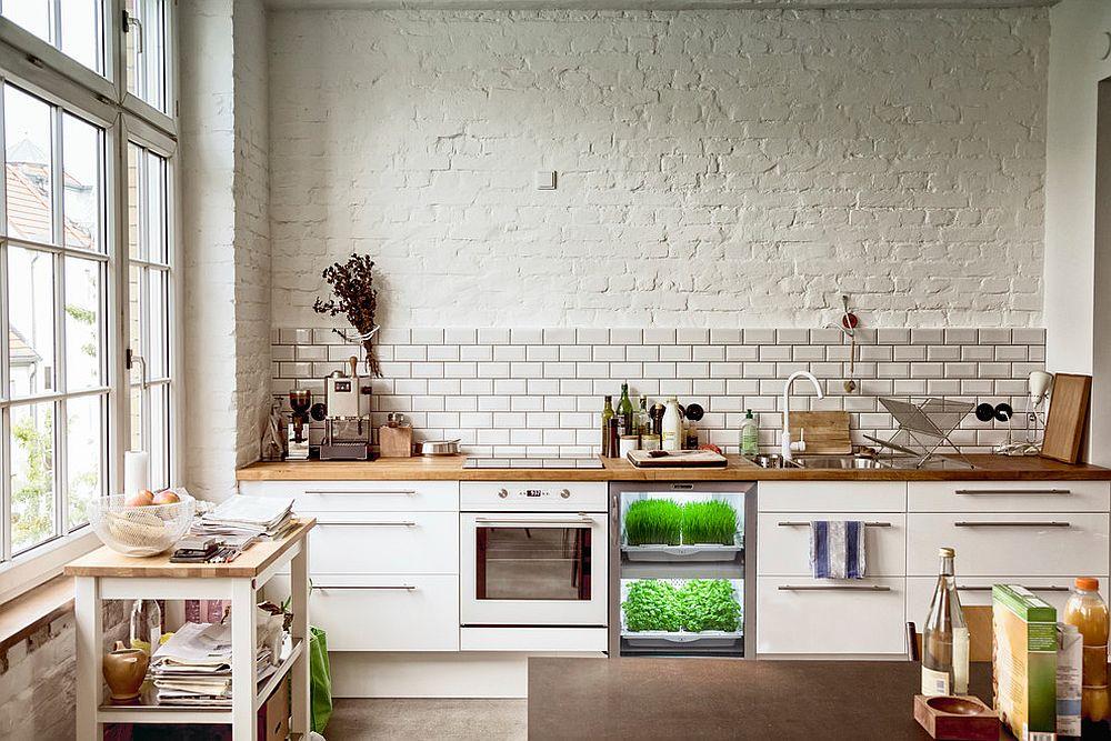 Những ý tưởng siêu hữu ích tạo góc xanh đẹp mắt với đủ loại cây gia vị và thảo mộc cho góc bếp thêm tươi mát chào hè - Ảnh 7.