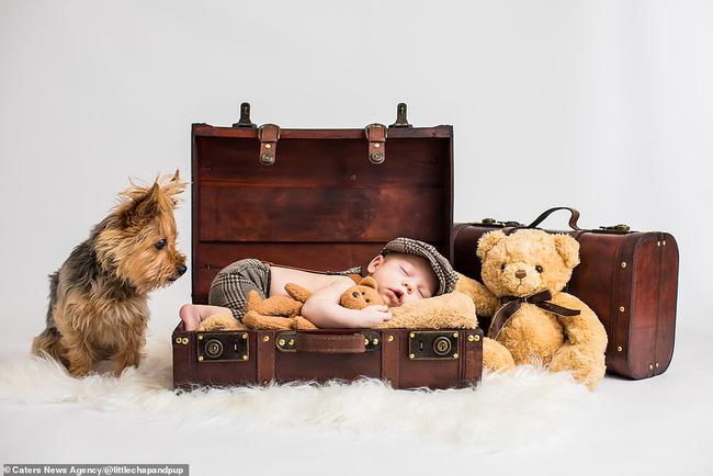 Tan chảy với những hình ảnh siêu cấp đáng yêu giữa cậu bé 2 tuổi và chú chó cưng - Ảnh 1.