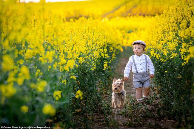 Tan chảy với những hình ảnh siêu cấp đáng yêu giữa cậu bé 2 tuổi và chú chó cưng - Ảnh 15.