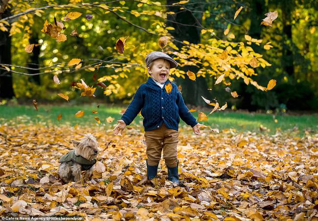 Tan chảy với những hình ảnh siêu cấp đáng yêu giữa cậu bé 2 tuổi và chú chó cưng - Ảnh 13.