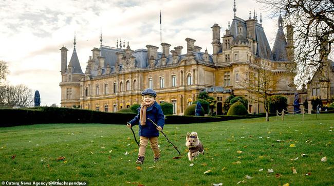 Tan chảy với những hình ảnh siêu cấp đáng yêu giữa cậu bé 2 tuổi và chú chó cưng - Ảnh 25.