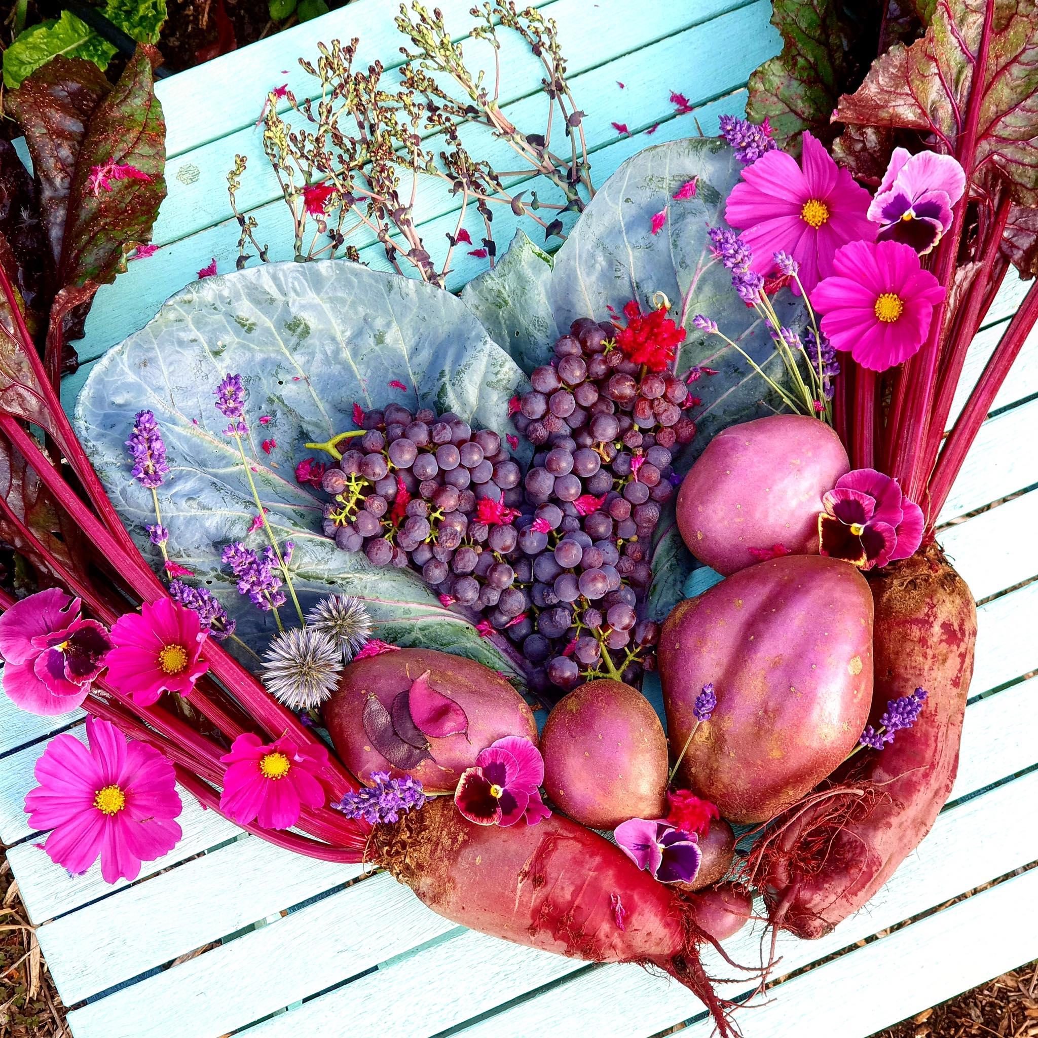 Khu vườn 225m² trồng toàn rau hữu cơ xanh tốt nhờ bí quyết dễ làm của bà mẹ trẻ đảm đang - Ảnh 13.