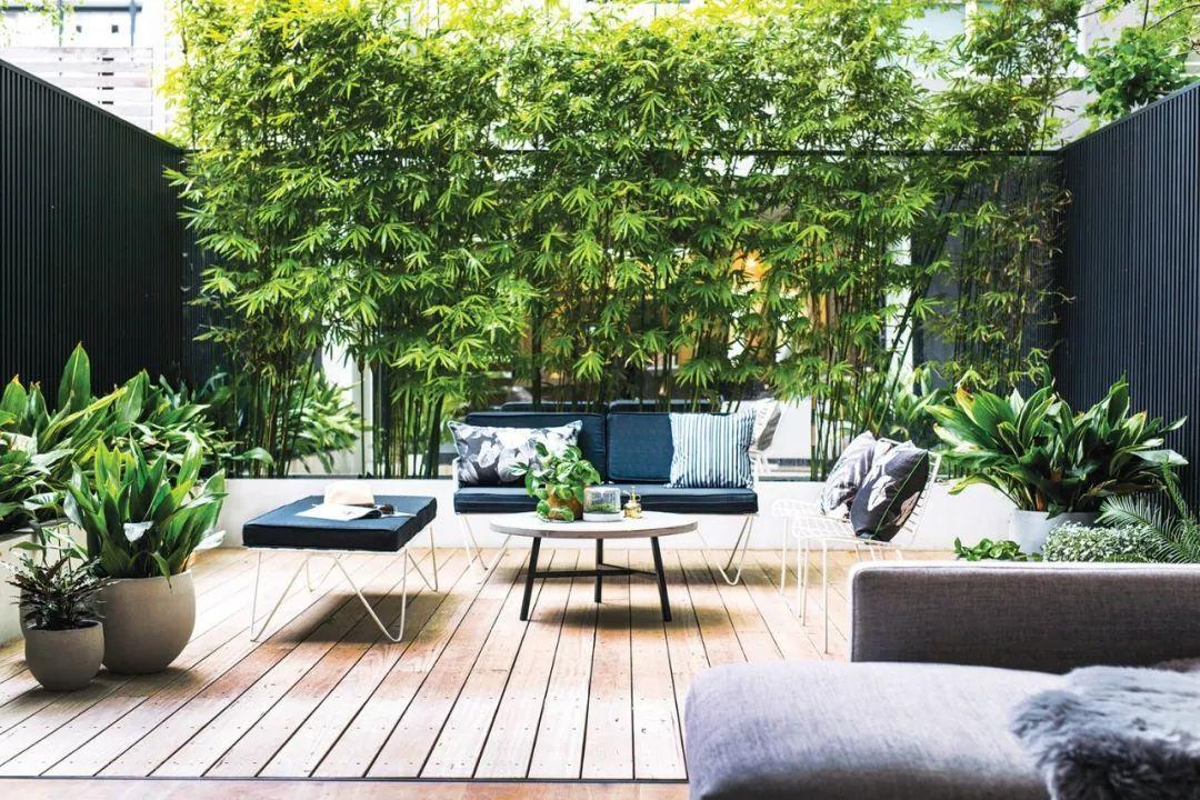 Gợi ý trang trí sân nhà thành góc tận hưởng mùa hè thú vị - Ảnh 10.