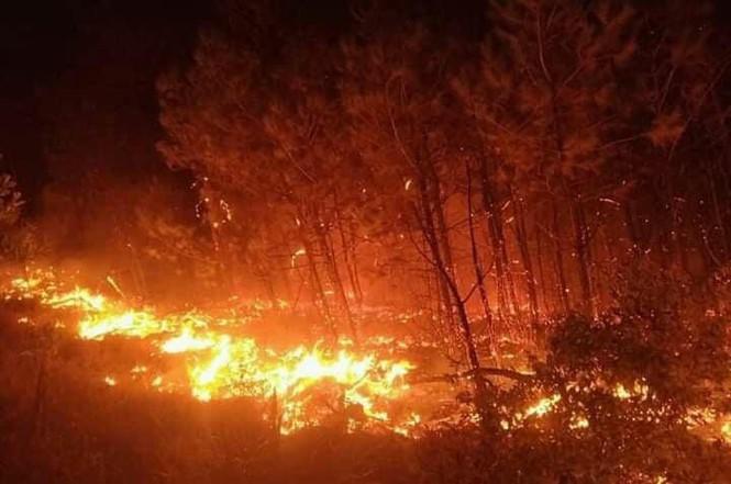 Hơn 1000 người đang căng mình dập đám cháy rừng lan rộng ở Nghệ An - Ảnh 1.