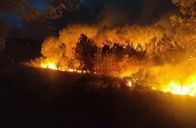 Hơn 1000 người đang căng mình dập đám cháy rừng lan rộng ở Nghệ An - Ảnh 2.