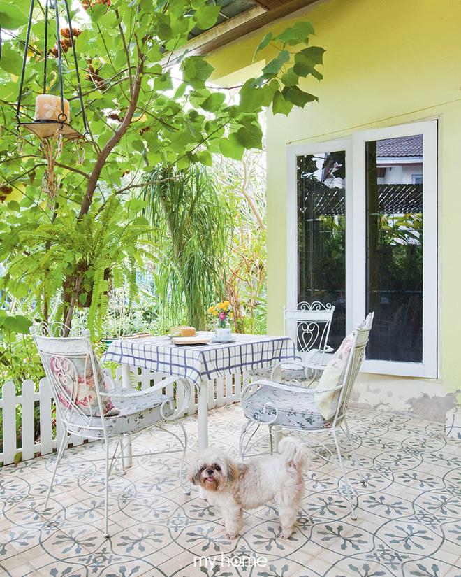 Nhà vườn ở quê của bà lão 80 tuổi đẹp đến nỗi khiến ai đi qua cũng phải dừng lại chiêm ngưỡng - Ảnh 12.