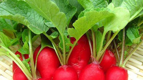 Những thực phẩm cấm kỵ đối với người huyết áp thấp