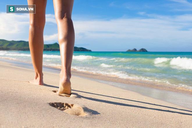 Tại sao đi bộ ven hồ, sông, biển lại tốt cho sức khỏe hơn: Gợi ý cách đi bộ tối ưu cho bạn - Ảnh 1.