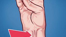 """9 bộ phận vô dụng đến thảm thương trên cơ thể chúng ta, nhưng lại là """"bảo chứng sinh tồn"""" của quá trình tiến hóa"""