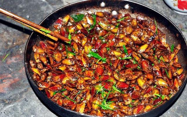 12 món đặc sản quen thuộc này của Việt Nam khiến khách Tây khóc thét, một số món chính người Việt cũng phải rùng mình - Ảnh 12.