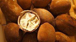 10 loại quả hiếm có khó tìm nhất thế giới nhưng Việt Nam đã có 4 trong số đó, còn mọc nhiều là đằng khác