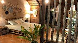 Chỉ hai tuần cải tạo với chi phí 133 triệu đồng, căn nhà cũ biến thành không gian đẹp như resort cao cấp giữa lòng Hà Nội