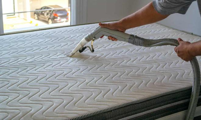 1 kg da chết và hàng trăm nghìn ve bụi: Hiểm họa không ngờ ẩn náu trên giường ngủ và cách tiêu diệt - Ảnh 6.