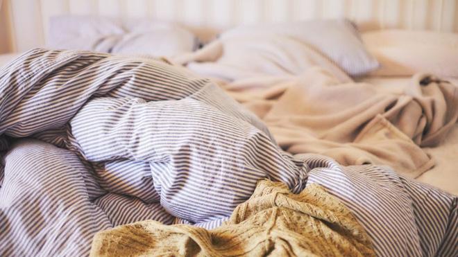 1 kg da chết và hàng trăm nghìn ve bụi: Hiểm họa không ngờ ẩn náu trên giường ngủ và cách tiêu diệt - Ảnh 1.
