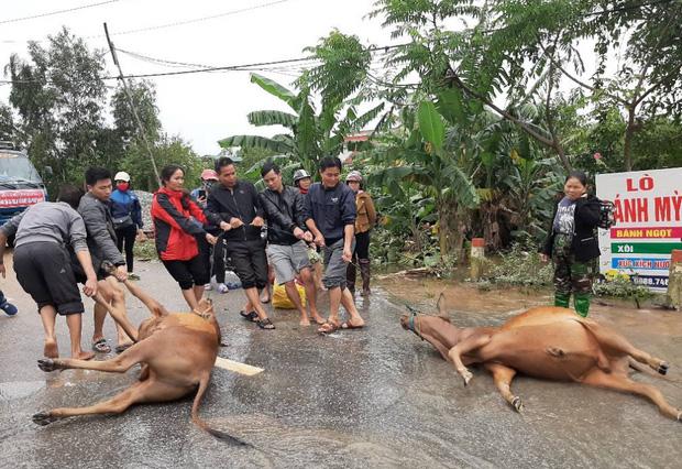 Mưa lũ tại Hà Tĩnh làm 6 người chết, hơn 45.500 hộ dân bị ngập - Ảnh 2.