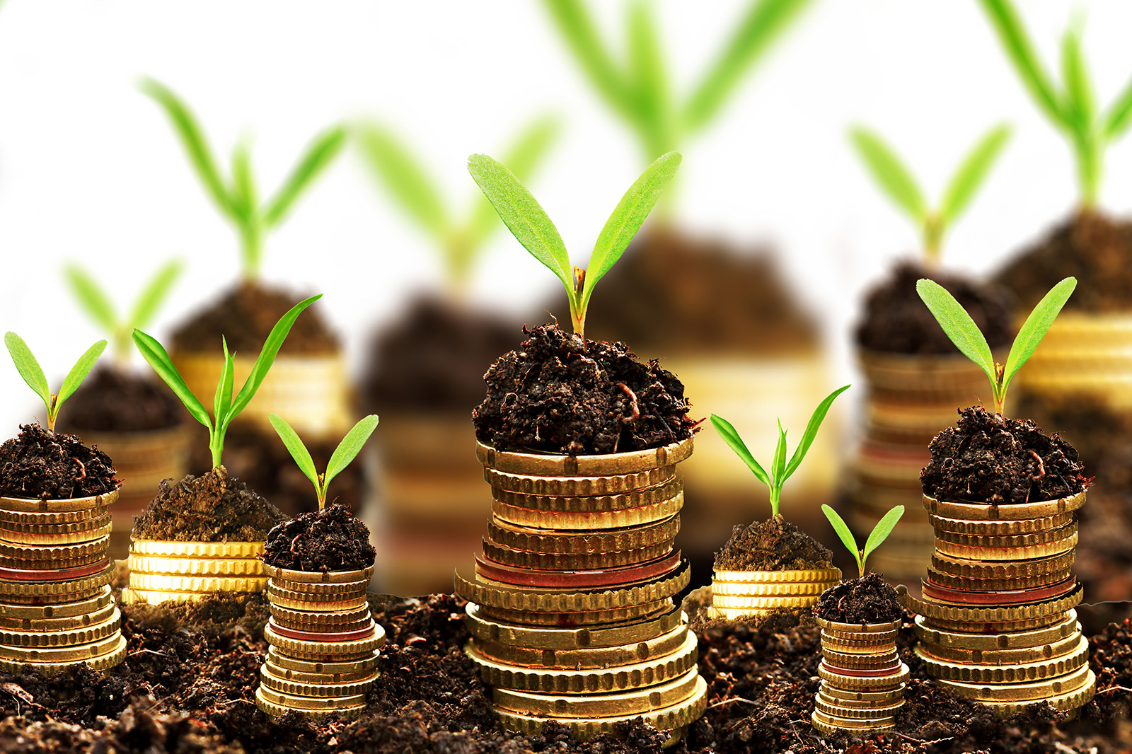3 quy tắc về quản lý tài chính gia đình mà mẹ nào cũng nên nắm rõ - Ảnh 3.