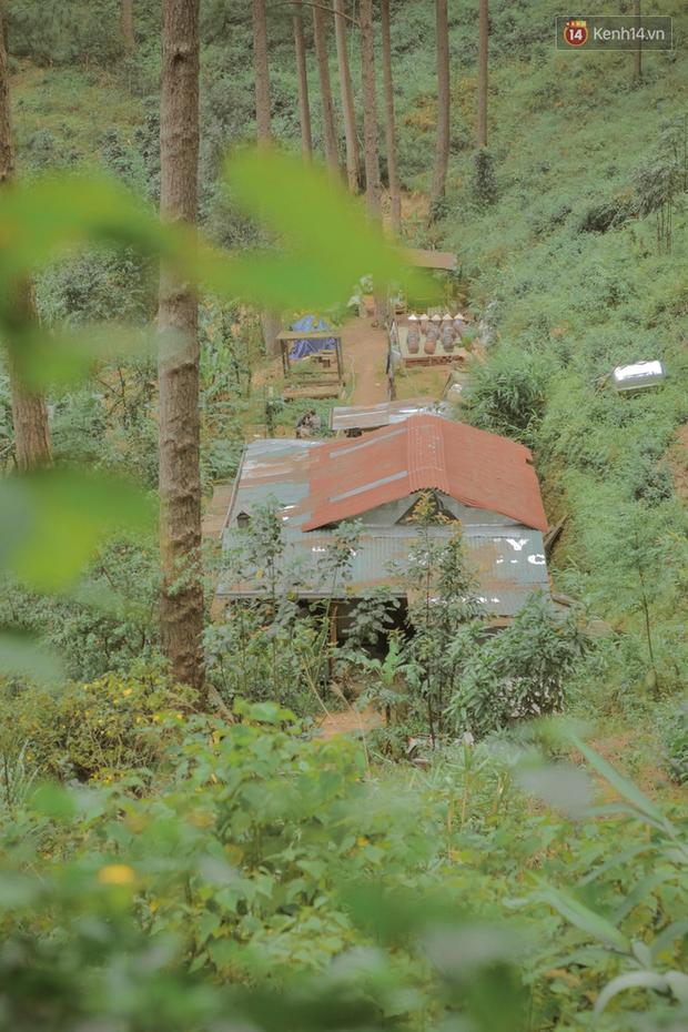 """Đà Lạt có 4 quán cafe theo phong cách """"chill phết"""" cực hiếm người biết: Nằm biệt lập giữa rừng thông, đứng góc nào sống ảo cũng đẹp - Ảnh 5."""