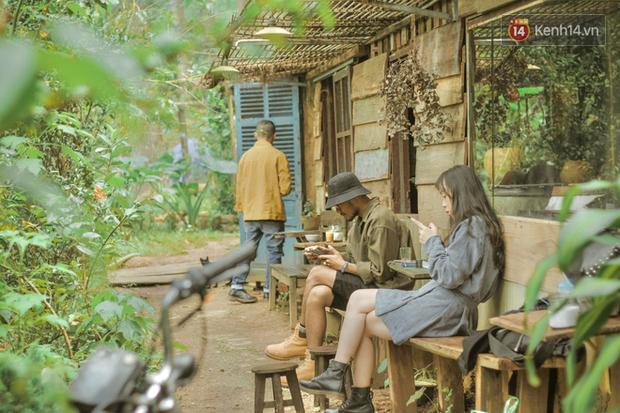 """Đà Lạt có 4 quán cafe theo phong cách """"chill phết"""" cực hiếm người biết: Nằm biệt lập giữa rừng thông, đứng góc nào sống ảo cũng đẹp - Ảnh 1."""
