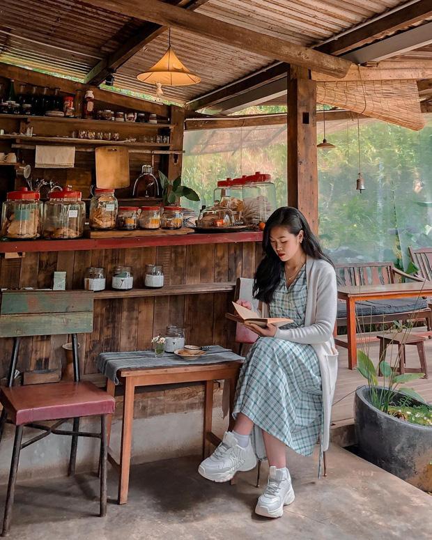 """Đà Lạt có 4 quán cafe theo phong cách """"chill phết"""" cực hiếm người biết: Nằm biệt lập giữa rừng thông, đứng góc nào sống ảo cũng đẹp - Ảnh 7."""