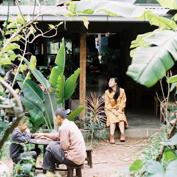 """Đà Lạt có 4 quán cafe theo phong cách """"chill phết"""" cực hiếm người biết: Nằm biệt lập giữa rừng thông, đứng góc nào sống ảo cũng đẹp - Ảnh 8."""