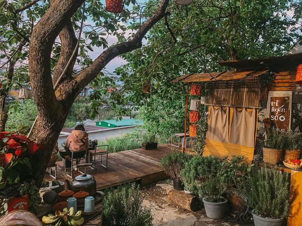 """Đà Lạt có 4 quán cafe theo phong cách """"chill phết"""" cực hiếm người biết: Nằm biệt lập giữa rừng thông, đứng góc nào sống ảo cũng đẹp - Ảnh 10."""