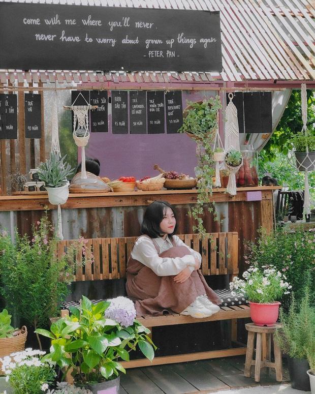 """Đà Lạt có 4 quán cafe theo phong cách """"chill phết"""" cực hiếm người biết: Nằm biệt lập giữa rừng thông, đứng góc nào sống ảo cũng đẹp - Ảnh 14."""
