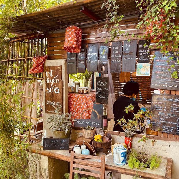 """Đà Lạt có 4 quán cafe theo phong cách """"chill phết"""" cực hiếm người biết: Nằm biệt lập giữa rừng thông, đứng góc nào sống ảo cũng đẹp - Ảnh 12."""