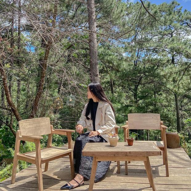 """Đà Lạt có 4 quán cafe theo phong cách """"chill phết"""" cực hiếm người biết: Nằm biệt lập giữa rừng thông, đứng góc nào sống ảo cũng đẹp - Ảnh 24."""